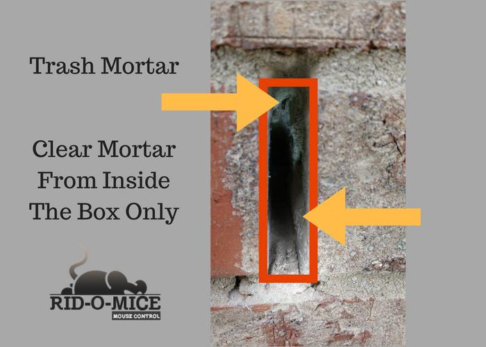 Trash_Mortar