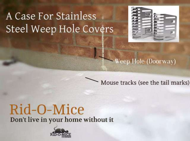 quebec weep hole covers